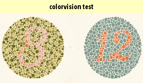 3_color vision test