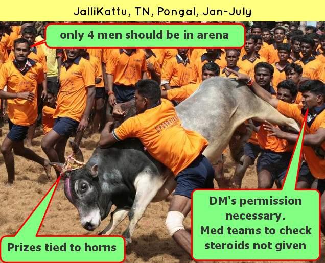 Jallikattu Supreme court ban