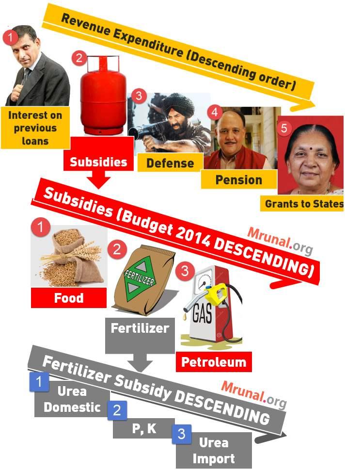 Budget 2014 Revenue Expenditure subsidies