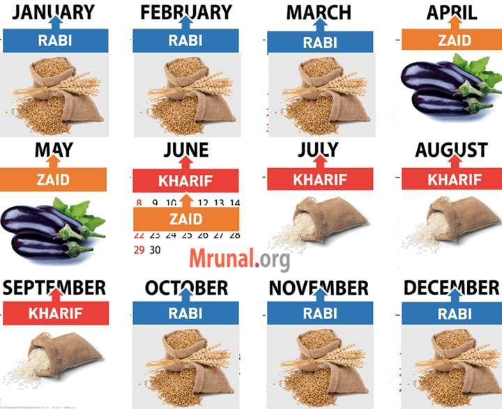 Cropping seasons in India calendar