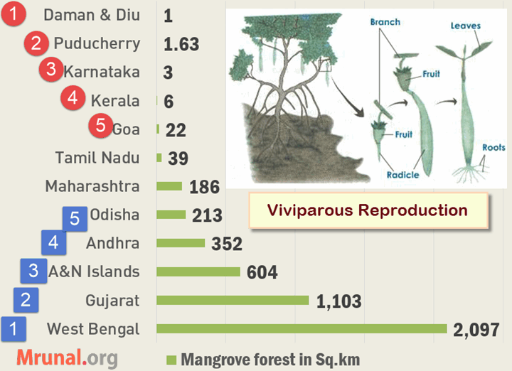 Mangrove area in India ranking