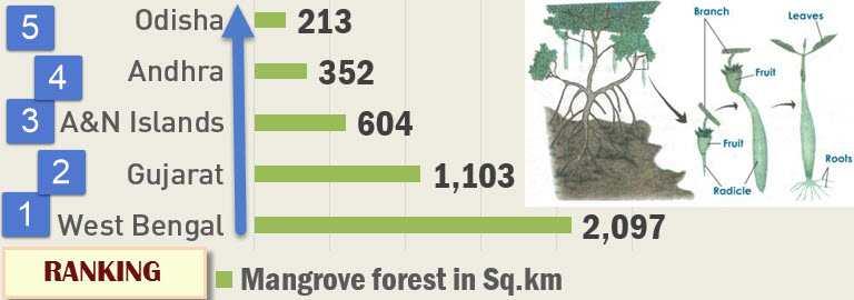 summary  forest survey 2013