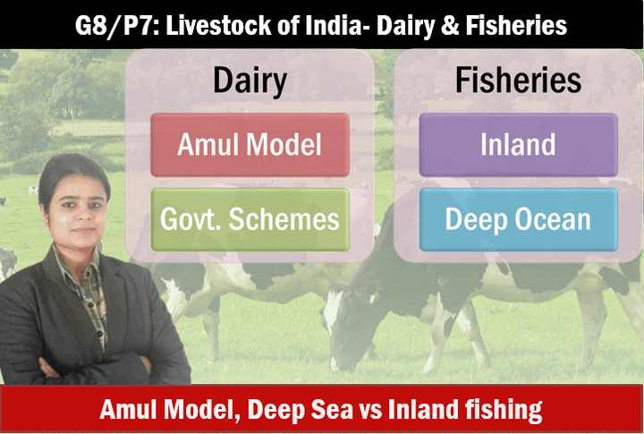 livestock dairy & fisheries