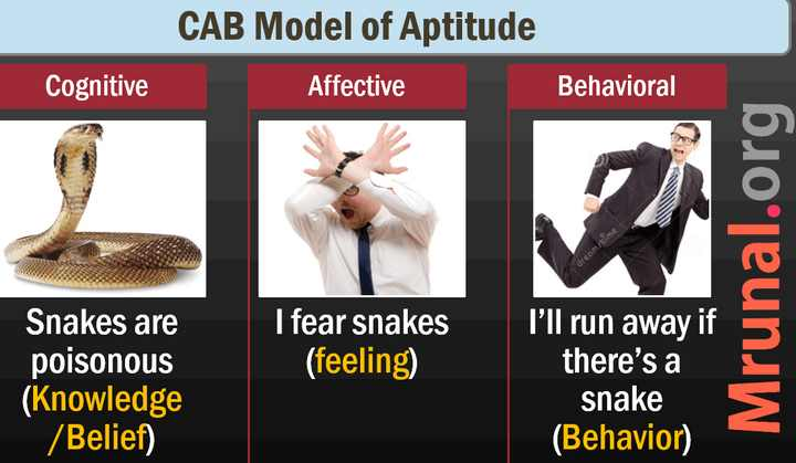 Attitude: CAB Model