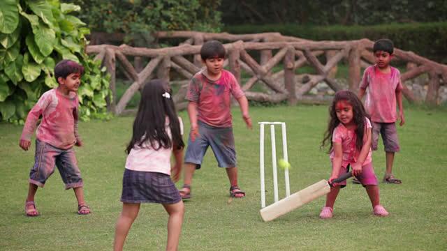 Mixed Cricket Match
