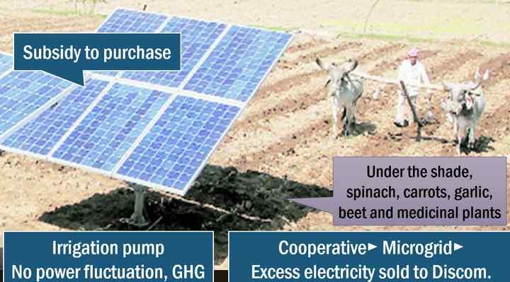 solar cooperative Gujarat