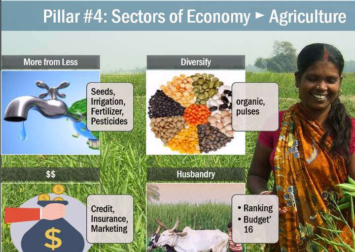 Economic Survey Notes Agriculture Produce More From Less