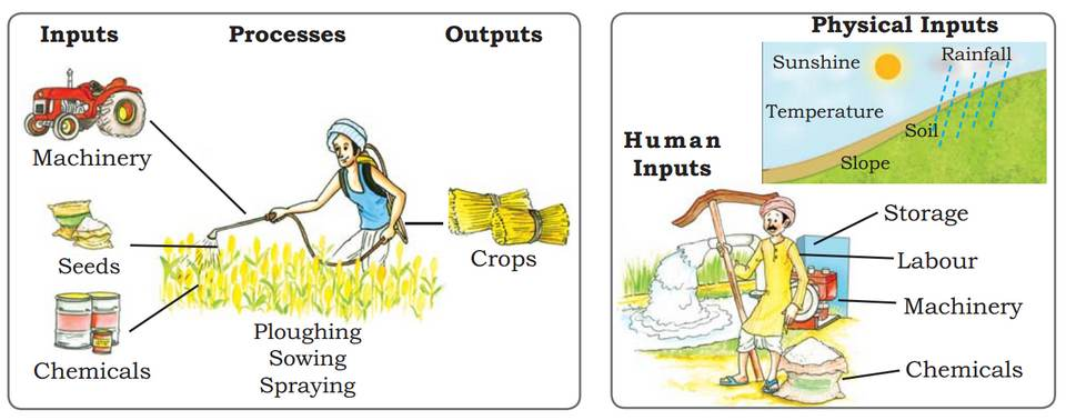 Agriculture Inputs