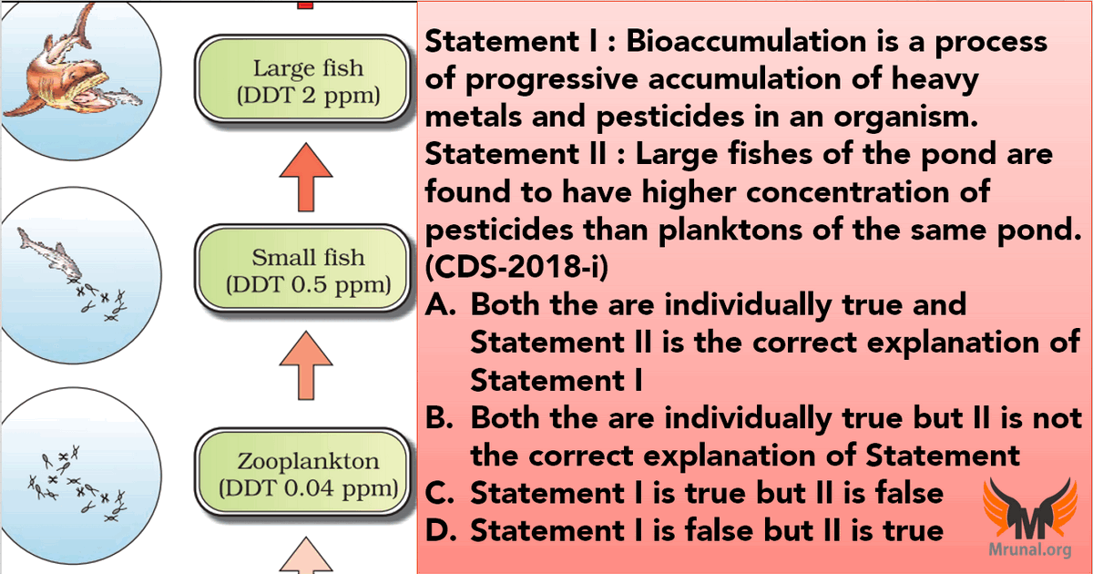 Bioaccumulation Biomagnification